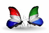 picture of holland flag  - Two butterflies with flags on wings as symbol of relations Holland and Sierra Leone - JPG