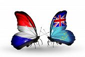 image of holland flag  - Two butterflies with flags on wings as symbol of relations Holland and Tuvalu - JPG