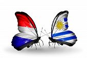 stock photo of holland flag  - Two butterflies with flags on wings as symbol of relations Holland and Uruguay - JPG