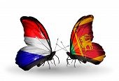 pic of holland flag  - Two butterflies with flags on wings as symbol of relations Holland and Sri Lanka - JPG