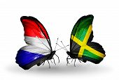 stock photo of holland flag  - Two butterflies with flags on wings as symbol of relations Holland and Jamaica - JPG