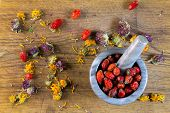 Berries and herbs