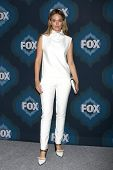 LOS ANGELES - JAN 17:  Katia Winter at the FOX TCA Winter 2015 at a The Langham Huntington Hotel on January 17, 2015 in Pasadena, CA
