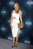 LOS ANGELES - JAN 17:  Jennifer Finnigan at the FOX TCA Winter 2015 at a The Langham Huntington Hotel on January 17, 2015 in Pasadena, CA