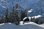 Winter Scene In Braunwald