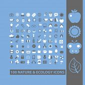 100 nature, ecology, tree, leaf, sun, butterfly, apple, forrest icons, signs, vector illustrations