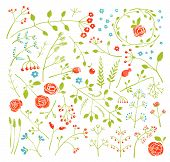 Floral Doodle Field Flowers and Plants Decoration Collection