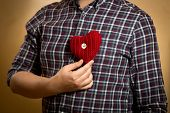 Man In Shirt Posing With Red Knitted Heart