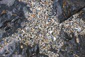Marine Pebbles