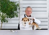 foto of infirmary  - Small dog has examination on table in senior veterinarian infirmary - JPG
