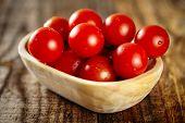 Cherry Tomatoes Closeup