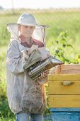 Teenage beekeeper and seasonal honey harvesting