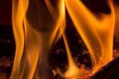 Closeup Of Burning Wood