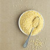 Organic Millet Gruel in a Spoon