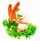 Green Salad With Shrimps  Isolated On White Background For Your Design