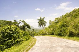 picture of long winding road  - Long and winding road among the beautiful Cuban countryside featuring amazing blue and green colors - JPG