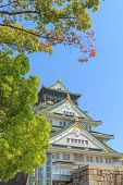 pic of castle  - Himeji Castle is traditional japanese castle in Osaka Japan - JPG