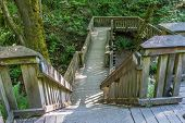 stock photo of dash  - A wooden walking structure gives acces to a trail at Dash Point State Park in Washington State - JPG