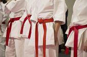 pic of karate  - Karate sportsmen with red belts in white kimono - JPG