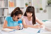 pic of schoolgirls  - Schoolgirls working with microscope during biology lesson