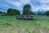 image of honey bee hive  - Bee hives on trail in rural landscape - JPG