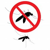 picture of anti  - vector anti mosquito sign and mosquito separated on white - JPG