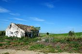 picture of abandoned house  - Abandoned house in old railway converted in bikes road - JPG