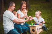 picture of nesting box  - Happy family with nesting box and colorful paints in green summer forest - JPG