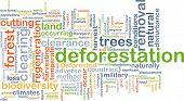 picture of biodiversity  - Background concept wordcloud illustration of deforestation - JPG