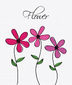 picture of obituary  - flowers design over white   background vector illustration - JPG