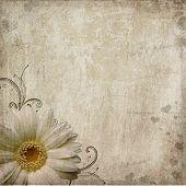 Постер, плакат: Старый винтажные потрепанный фон с цветок и сердца