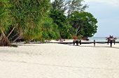Exotic Island Beach