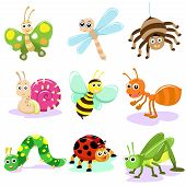 Insect Cartoon Set