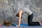 Woman Doing Yoga Posture Marjaryasana Or Cat Pose With  Real Cat