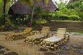 Beach Chairs In A Tropical Resort