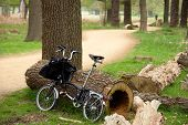 Folding Bicycle In The Park