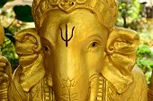 picture of laddu  - Golden Ganesh Statue with psi sign on face - JPG