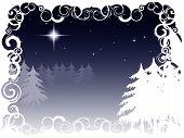 Winter Night Scene
