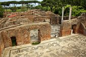 Ancient Roman Baths Of Neptune Mosaic Floors Ostia Antica Rome Italy