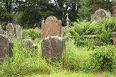stock photo of mortuary  - Old tombstones on a overgrown cemetary in England - JPG