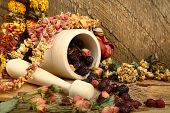Wooden Mortar, Dog Rose And Dried Flowers