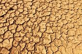 Cracked Soil On Desert