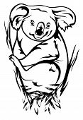 picture of eucalyptus trees  - koala bear sitting on the eucalyptus tree black and white outline - JPG