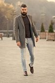 Stylish Casual Outfit Spring Season. Menswear And Male Fashion Concept. Man Bearded Hipster Stylish  poster