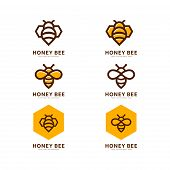 Honey Bee Set. Vector. Set Of Honey And Bee Labels For Honey Logo Products. Isolated Insect Icon. Fl poster