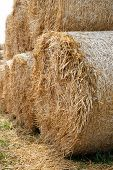 Stack Hay Closeup. Large Bales Of Hay Are Stacked In Stacks. poster