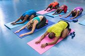 High angle of diverse fit people performing yoga together on a exercise mat in fitness center. Brigh poster