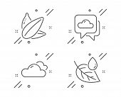 Weather Forecast, Sunflower Seed And Cloudy Weather Line Icons Set. Leaf Dew Sign. Cloudy, Vegetaria poster