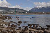 Vancouver Stanley park overlook