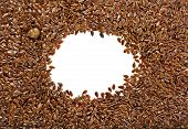 picture of flax plant  - border frame of flax seeds on white background with copy space - JPG